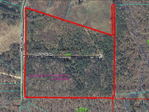 30 Ac Tract - Flat With Driveway : Ashville : Saint Clair County : Alabama
