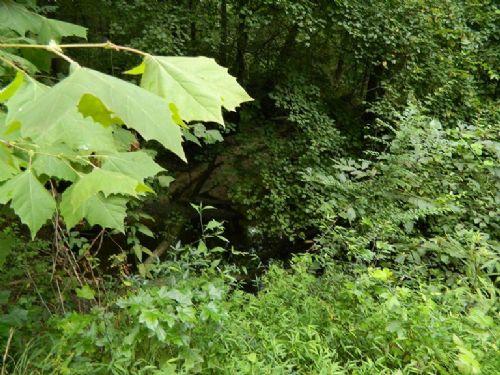 4.43 Acre Beautiful Lot With Creek : Lexington : Oglethorpe County : Georgia