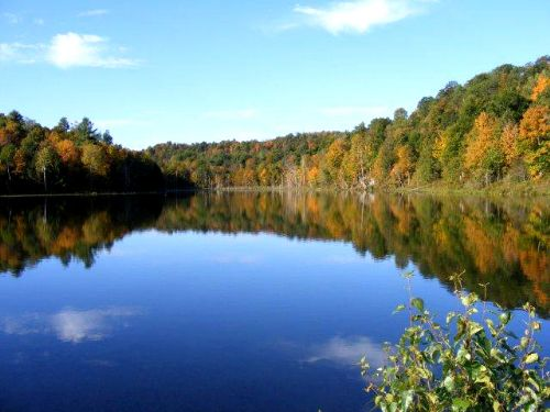 7 Acres Water Front On Fishing Pond : Hermon : St. Lawrence County : New York