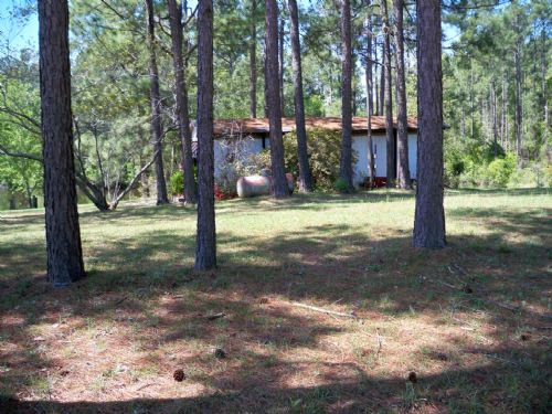 25 Acres And Large Pond : Swainsboro : Emanuel County : Georgia