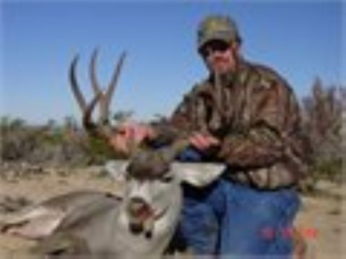 Cash Deal  20 Acres Only $7995 : Sierra Blanca : Hudspeth County : Texas