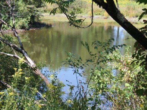 Waterfront Land & Building Site : Orwell : Oswego County : New York