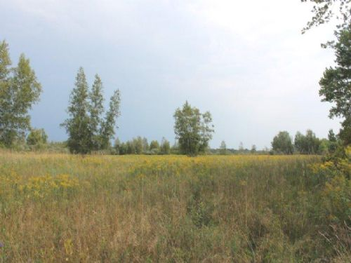 Land With Owner Financing 36 Acres : Wilna : Jefferson County : New York