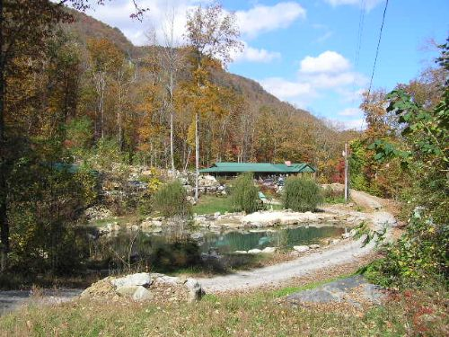 Estate Home, Spring, Pool, 52+ Acre : Dunlap : Sequatchie County : Tennessee