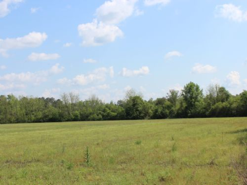 75 Acres : Caledonia : Lowndes County : Mississippi