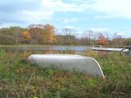 59 Acres Country Land With Pond : Burlington : Otsego County : New York