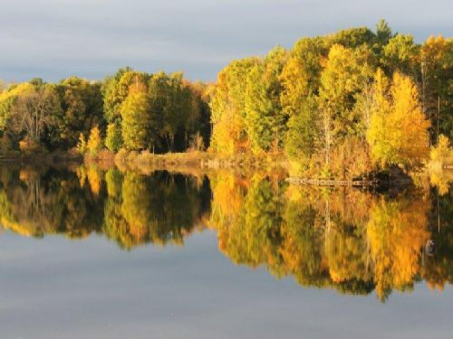 9 Acres Autumn Lake Building Site : Orwell : Oswego County : New York