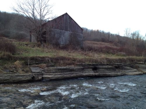 Excellent Hunting W/ Trout Stream : Greenwood : Steuben County : New York