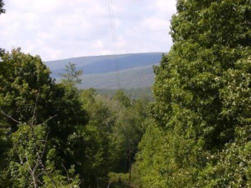 Cheaha Mtn. Views On 25 Acres : Delta : Clay County : Alabama