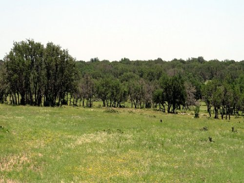 Hunting, Investment, Rocksprings Tx : Rocksprings : Edwards County : Texas