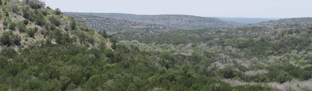 Rugged Hunting Land, Exotics : Loma Alta : Val Verde County : Texas