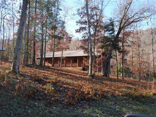 Lick Fork Cabin-creek-spring : Mountain View : Stone County : Arkansas