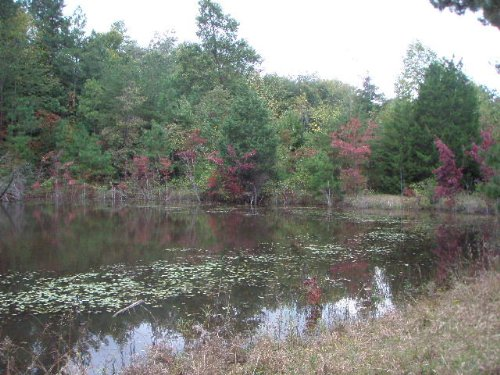 Ideal Recreational Tract : Dillwyn : Buckingham County : Virginia