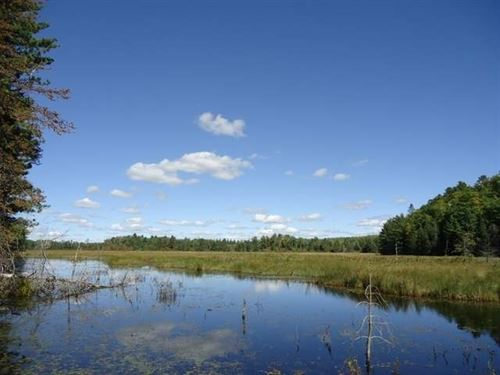 Pristine Waters Preserve, Lot 11 : Minocqua : Oneida County : Wisconsin