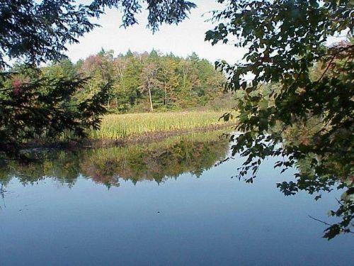 84 Acres Fish Creek Farmland Woods : Camden : Oneida County : New York