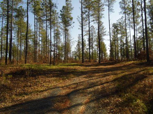 Hunter's Delight : Dillwyn : Buckingham County : Virginia