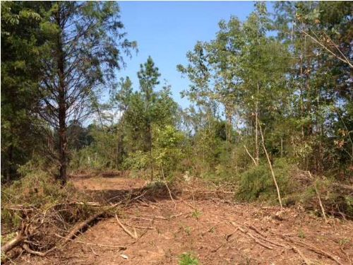 17.7+/- Acres Bank Owned Property : Ooltewah : Hamilton County : Tennessee