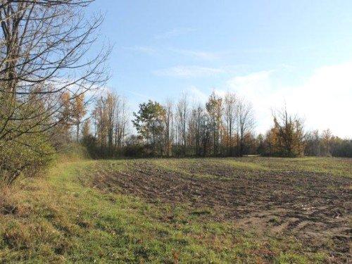 10 Acres Farmland Owner Financing : Palatine : Montgomery County : New York