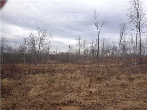 Bank Owned 64.19+/- Acres $69,997 : Tracy City : Grundy County : Tennessee