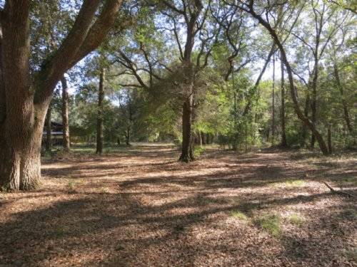 24.02 Acres In Melrose, Fl : Melrose : Alachua County : Florida