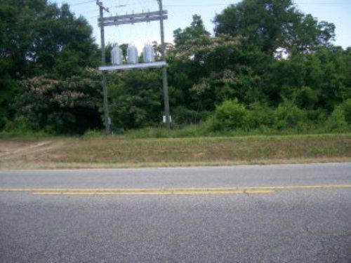 7.99 +/- Acres : Troy : Pike County : Alabama
