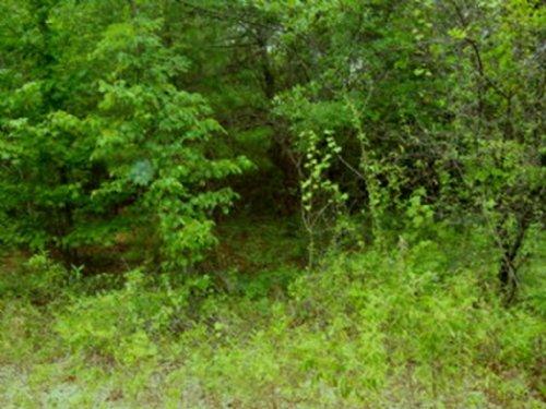 9.5 +/- Acres : Troy : Pike County : Alabama