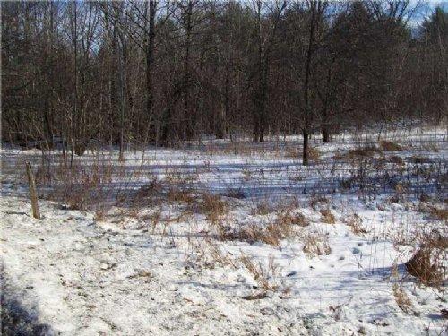 Bradford 6 Acre Homestead Parcel : Bradford : Penobscot County : Maine