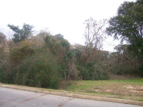 0.8+/- Ac On Park Street : Troy : Pike County : Alabama