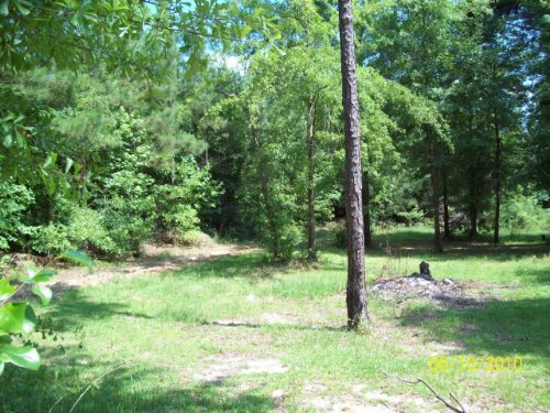 Great 5 Ac Lot For Building : Goshen : Pike County : Alabama
