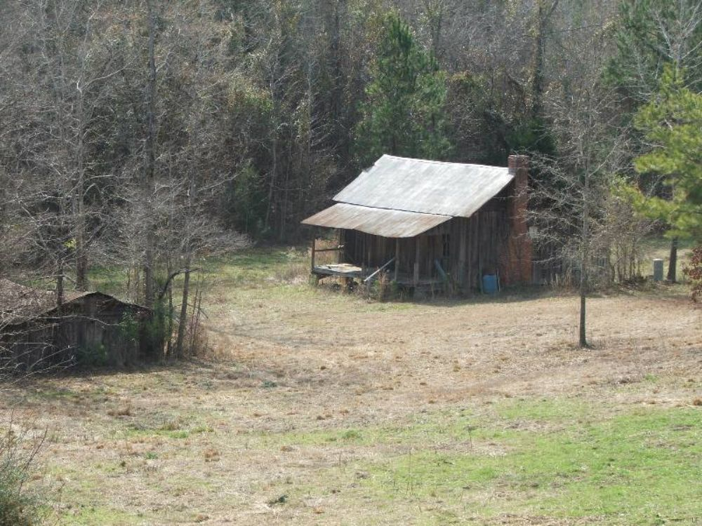 Oakes Bottom Tract : Sprott : Perry County : Alabama