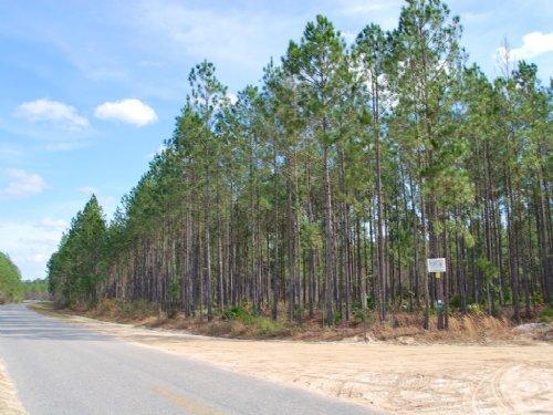 Gibbs Eight Mile Post Road : Waycross : Ware County : Georgia