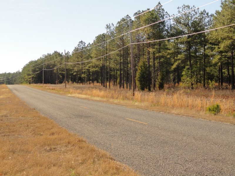 Lowered To $1695/ac On Timber Tract : Fort Valley : Crawford County : Georgia