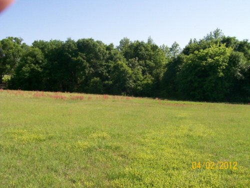 6.54 +/- Ac : Troy : Pike County : Alabama