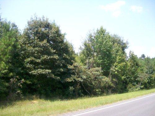 5+/- Ac Of Pine And Hardwood : Spring Hill : Pike County : Alabama