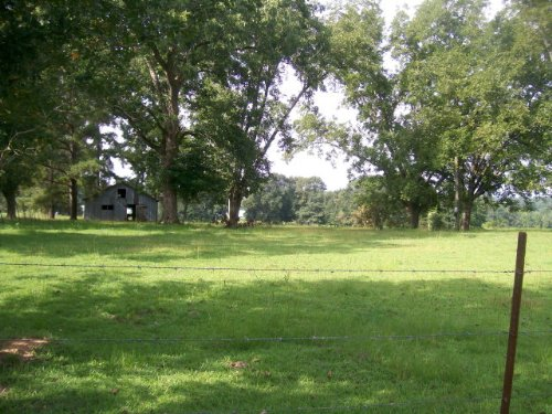 7+/- Ac Of Rolling Pasture : Banks : Pike County : Alabama