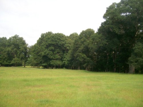25+/- Ac Excellent For A New Home : Banks : Pike County : Alabama