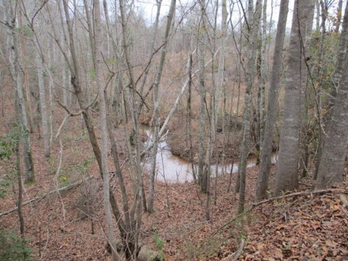 100+/- Ac Of Great Commercial Land : Brundidge : Pike County : Alabama