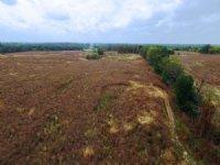 81 Acre Combination Farm : Thompson : Audrain County : Missouri