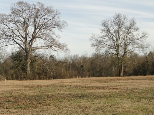 6.27 Acres Near Wr : Byron : Peach County : Georgia