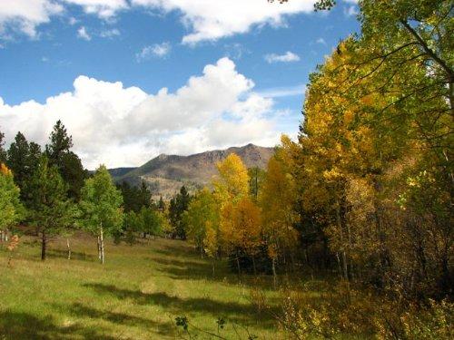 Stitt Ranch : Bailey : Park County : Colorado