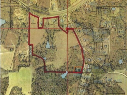 53.8 +/- Acres : Troy : Pike County : Alabama