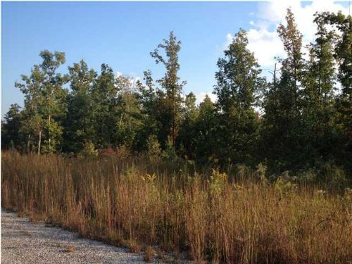 5.25+/- Acres Owner Financing : South Pittsburg : Marion County : Tennessee