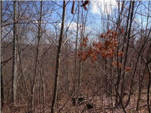 7.7+/- Acres Owner Financing : South Pittsburg : Marion County : Tennessee