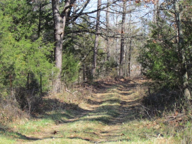 4 Acres, Water, Electric, Sewer : Winona : Shannon County : Missouri
