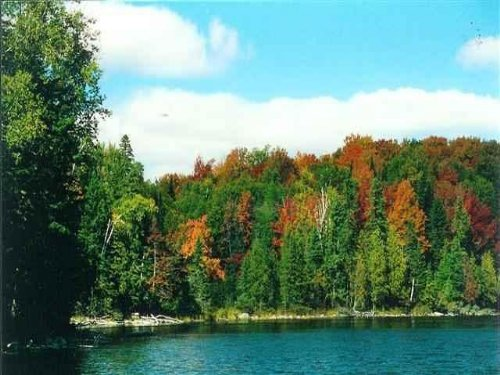 Lot 31 Secluded Point Rd, 1071364 : Michigamme : Baraga County : Michigan