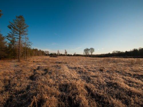 May Farm : Siler City : Chatham County : North Carolina