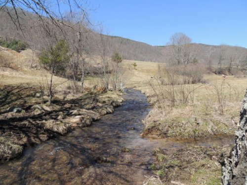 79 Acres ~ Gorgeous Tract : Troutdale : Grayson County : Virginia