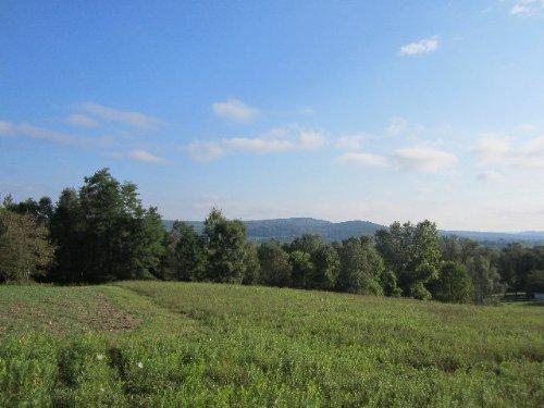 18 Acres Farmland Pond Views : Caroline : Tompkins County : New York