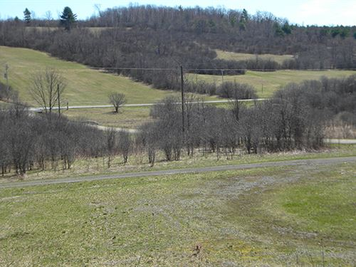125 Acres Tillable Farmland Woods : Tyrone : Schuyler County : New York
