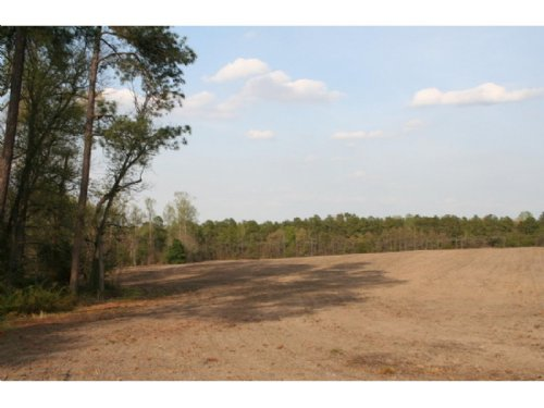 43.6 Acres On Washington Hwy : Doswell : Hanover County : Virginia